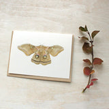 Watercolor note cards featuring a polyphemus moth painting by Kathleen Maunder