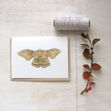 Note card set featuring a polyphemus moth watercolor painting by Kathleen Maunder of Trowel and Paintbrush