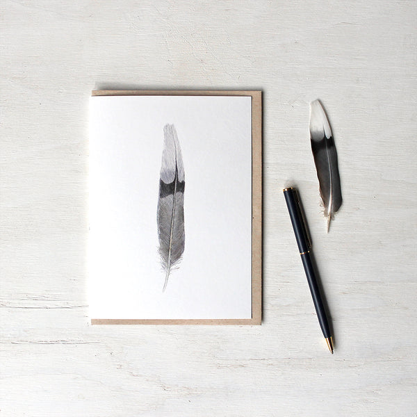 Note card featuring a watercolour painting of a black, grey and white mourning dove feather. Artist Kathleen Maunder.