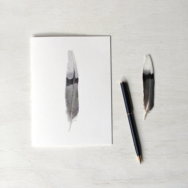 Note card featuring an original watercolor painting of a mourning dove feather. Artist Kathleen Maunder.