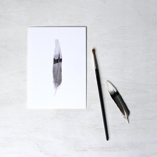 Art print featuring a mourning dove feather painted in watercolour. Artist Kathleen Maunder.