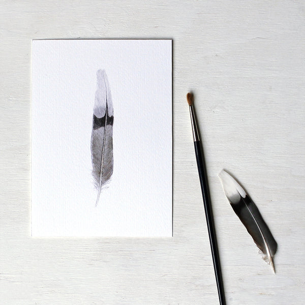 An art print featuring a watercolor painting of a mourning dove feather. Artist Kathleen Maunder.
