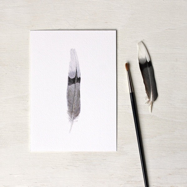 Watercolor painting of a mourning dove feather, seen here as a 5 x 7 art print. Artist Kathleen Maunder