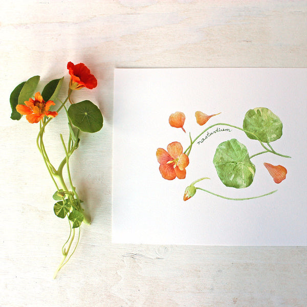 Nasturtiums: watercolour art print by Kathleen Maunder of Trowel and Paintbrush