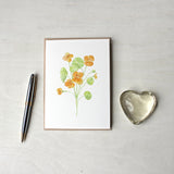 Nasturtium watercolour note cards by artist Kathleen Maunder