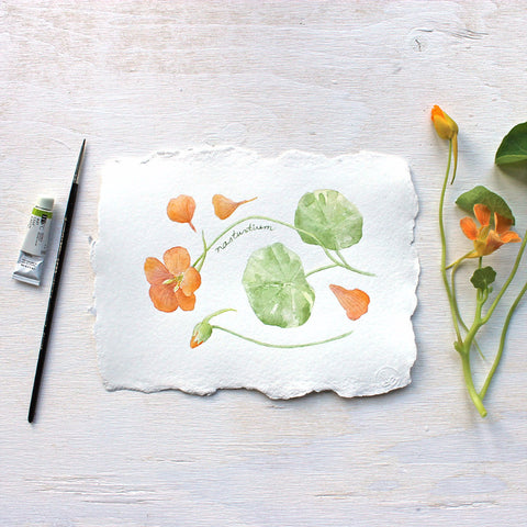 Nasturtiums: original watercolour painting by Kathleen Maunder of Trowel and Paintbrush