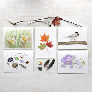 Nature Collection Watercolor Note Cards by Kathleen Maunder of Trowel and Paintbrush