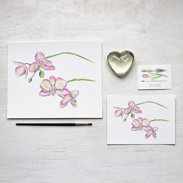 Orchid watercolor painting by Kathleen Maunder available as 8 x 10 or 5 x 7 prints