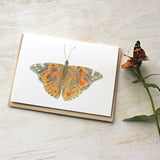 Watercolor note cards featuring a painted lady butterfly painting by Kathleen Maunder