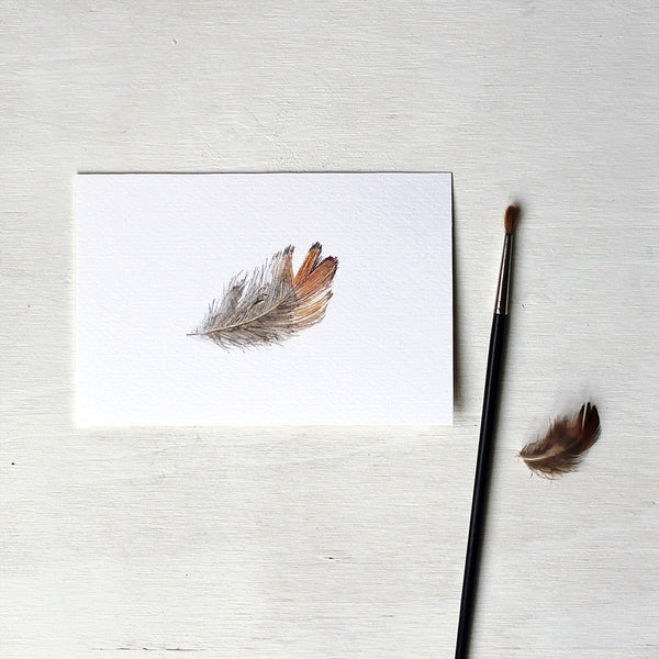 Print of a pheasant feather watercolour painting by Kathleen Maunder.