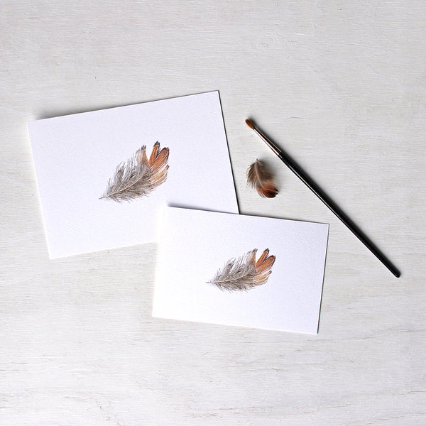 Prints available in two sizes of a pheasant feather watercolor painting by Kathleen Maunder.