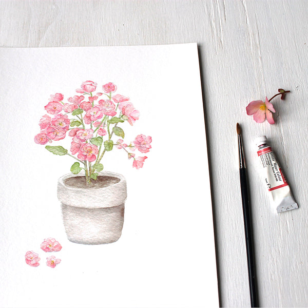 Close up of pink begonia watercolor painting by Kathleen Maunder. Available as print.
