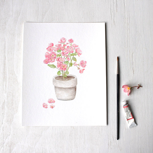 Pink begonia in a pot - Print based on a watercolour painting by Kathleen Maunder