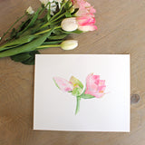 Botanical watercolor painting of pink amaryllis available as 8 x 10 print