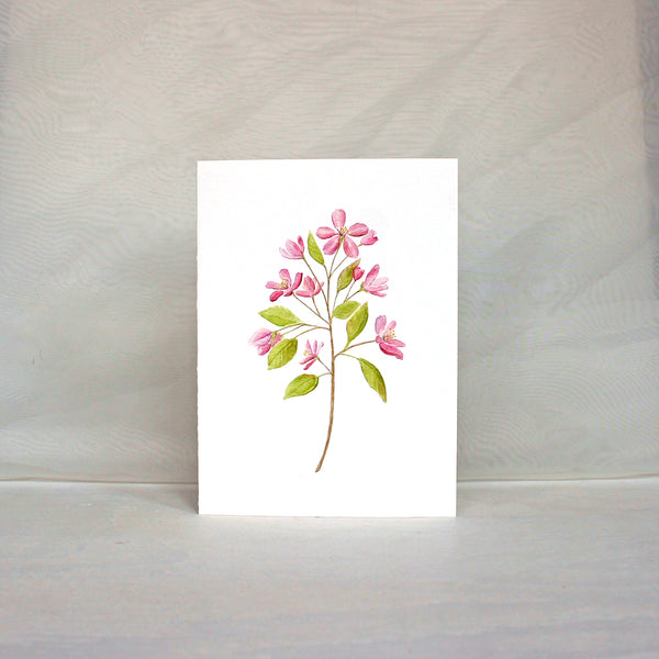 Note card featuring pink crabapple blossoms painted in watercolor. Artist Kathleen Maunder.
