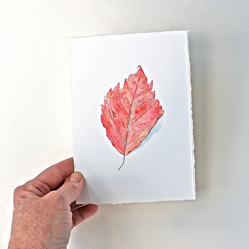 Original Watercolor - Red Leaf
