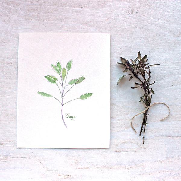 Sage watercolor print by Kathleen Maunder of Trowel and Paintbrush