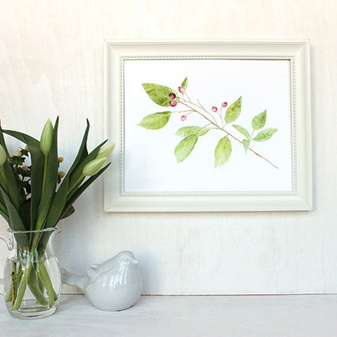 Botanical Watercolor - Branch and Berries