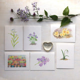 Set of six floral note cards featuring watercolours by Kathleen Maunder