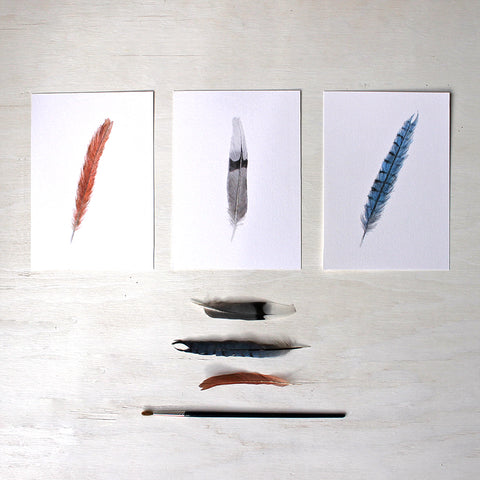 Set of three art prints featuring watercolor paintings of a female cardinal feather, mourning dove feather and blue jay feather. Artist Kathleen Maunder.