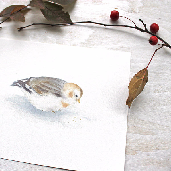 Close up of a snow bunting watercolor image by Kathleen Maunder of Trowel and Paintbrush