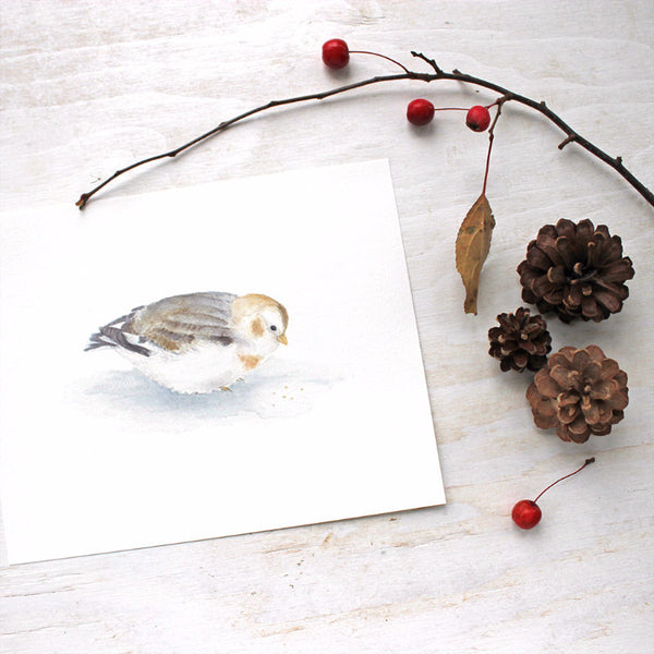 Snow bunting - bird art print by watercolor artist Kathleen Maunder of Trowel and Paintbrush