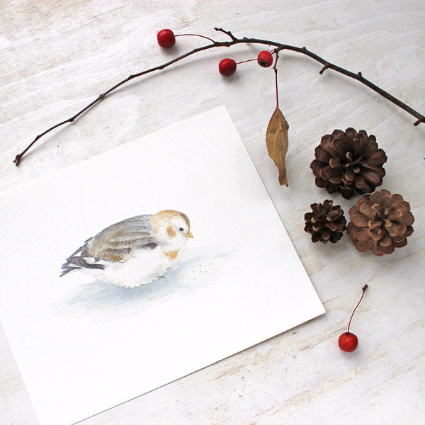 Snow bunting - bird art print by watercolour artist Kathleen Maunder