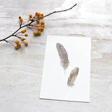 Sparrow feather art print by watercolour artist Kathleen Maunder of Trowel and Paintbrush