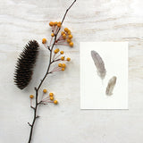 Sparrow feather art print by watercolor artist Kathleen Maunder of Trowel and Paintbrush