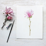 An art print featuring a botanical watercolor painting of a pink star magnolia flower by Kathleen Maunder