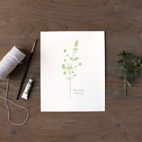 Print of summer savory painting by watercolor artist Kathleen Maunder, trowelandpaintbrush