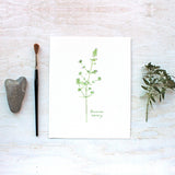 Herb Watercolor Print - Summer Savory