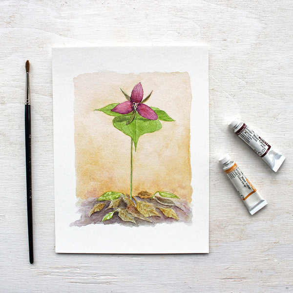 Red trillium print based on a watercolour painting by Kathleen Maunder