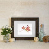 Framed 'Viburnum leaves and berries' print by Kathleen Maunder.