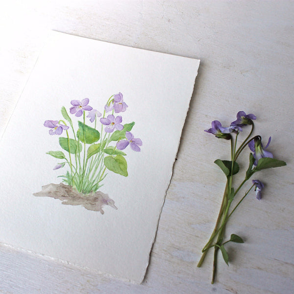 Wood violets watercolor painting by Kathleen Maunder of Trowel and Paintbrush