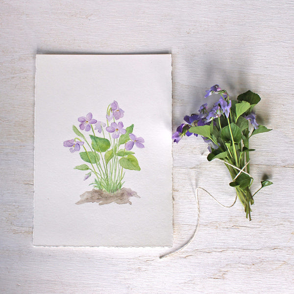 Wood violets watercolour painting by Kathleen Maunder of Trowel and Paintbrush