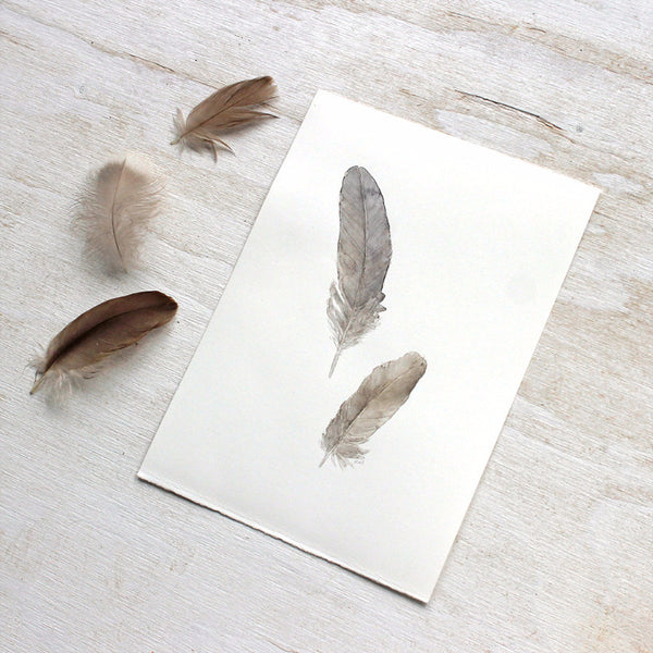 Feather painting by watercolor artist Kathleen Maunder
