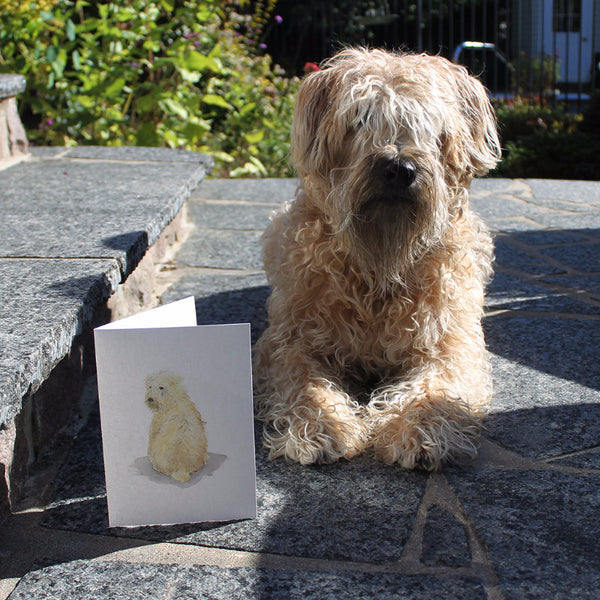 Meeko, my wheaten terrier, featured on note cards. Kathleen Maunder / Trowel and Paintbrush