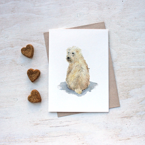 Soft coated wheaten terrier. Dog note cards by Kathleen Maunder.