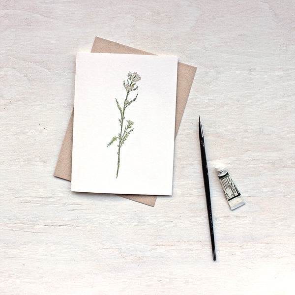 White yarrow (Achillea millefolium) note cards by watercolor artist Kathleen Maunder