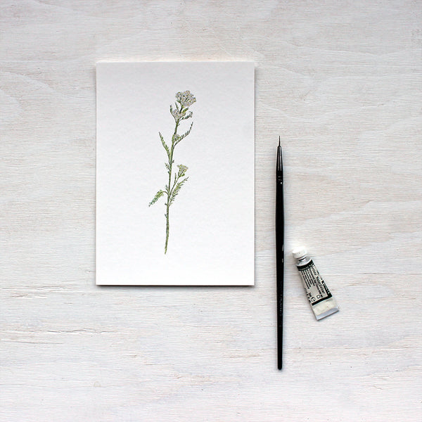 White Yarrow Art Print featuring a watercolor painting by artist Kathleen Maunder