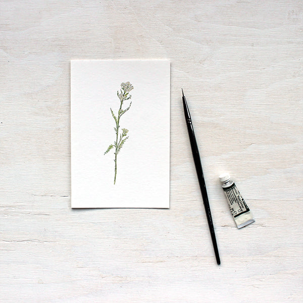 Art print featuring a watercolor painting of white yarrow by Kathleen Maunder