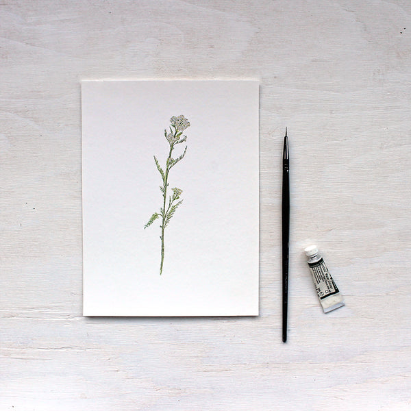 White Yarrow Art Print featuring a watercolor by artist Kathleen Maunder