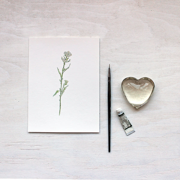 White Yarrow Art Print featuring a watercolour painting by Kathleen Maunder