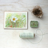 White Daffodil - Set of 5 Note Cards