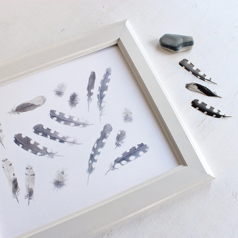 Woodpecker feather print by watercolor artist Kathleen Maunder