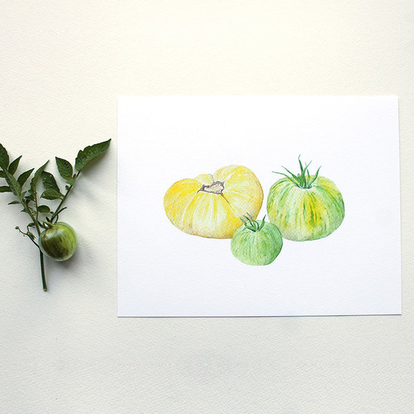 Heirloom yellow and green zebra garden tomatoes. Watercolor print by artist Kathleen Maunder