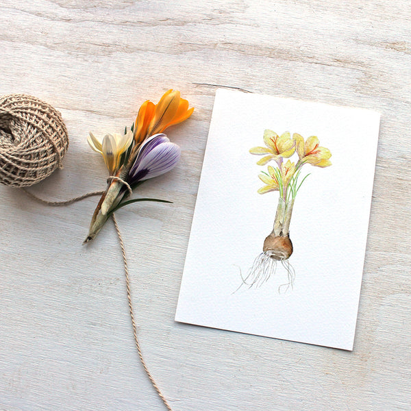 Watercolor image of crocuses by artist Kathleen Maunder (trowelandpaintbrush)