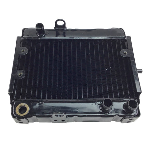 Radiator for 250cc Scooter