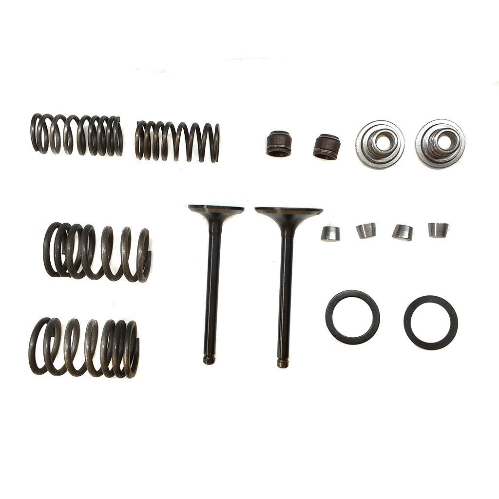 Valve Set With Springs & Clips for 125cc ATV Engines - Version 3